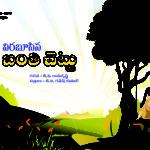 Viraboosina Banti Chettu విరబూసిన బంతి చెట్టు
